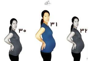 اندازه شکم در هفته ۳۱