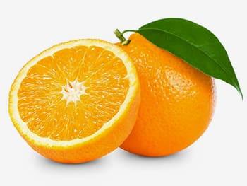 تقویت هوش جنین میوه های